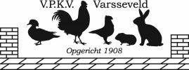 VPKV Varsseveld